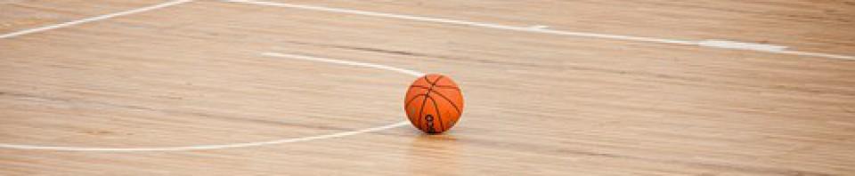 cropped-basketball-390008__180.jpg